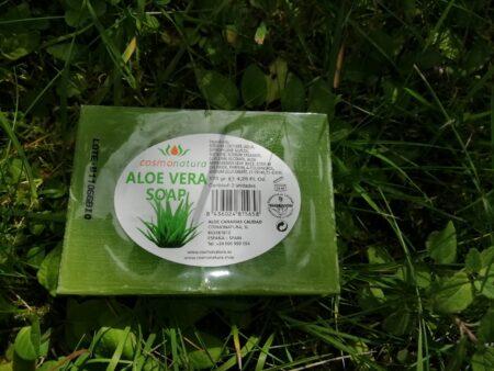 Aloe Vera seep